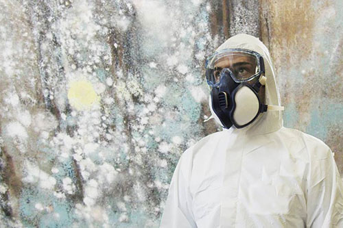 About Mold Investigators - Inspector with Protective Wear and Mask