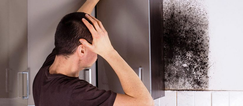 man finding black mold